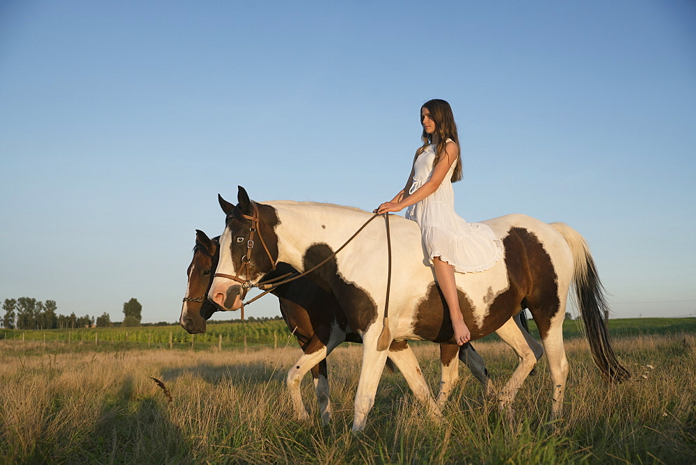 Girl bareback riding horse in rural field