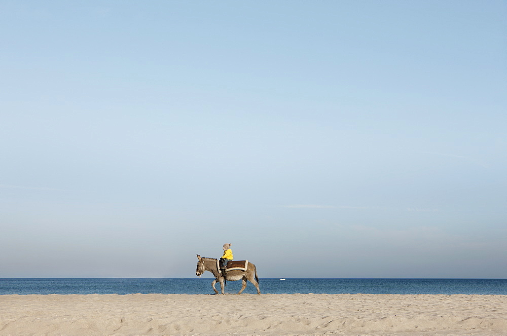 Girl riding donkey on beach, Wiendorf, Mecklenburg-Vorpommern, Germany