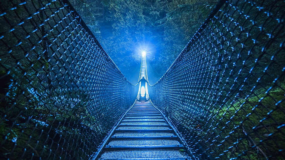 Mysterious silhouetted person on suspension bridge in woods at night - 1177-2009