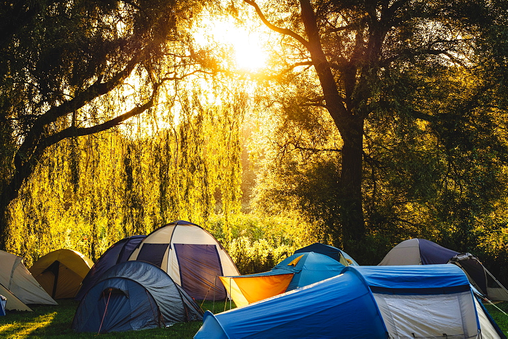 Tents under sunny trees at campsite