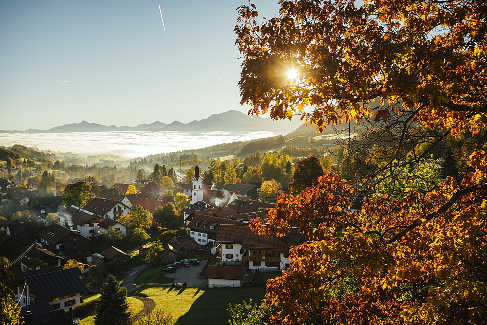 Sunny, idyllic scenic autumn view of townscape, Bad Kohlgrub, Bayern, Germany - 1177-2269