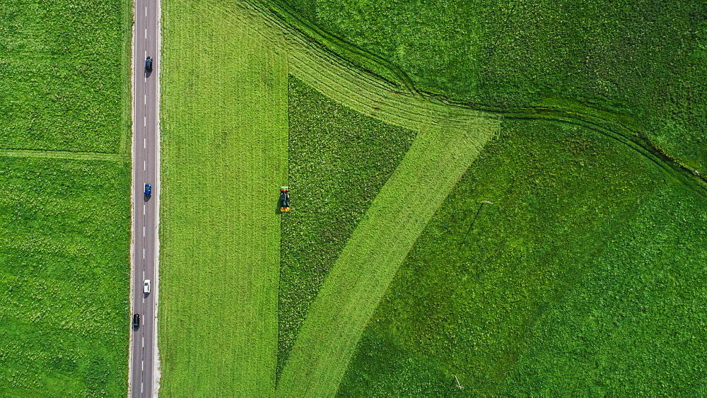 Drone point of view tractor harvesting lush green farmland crop, South Tyrol, Italy