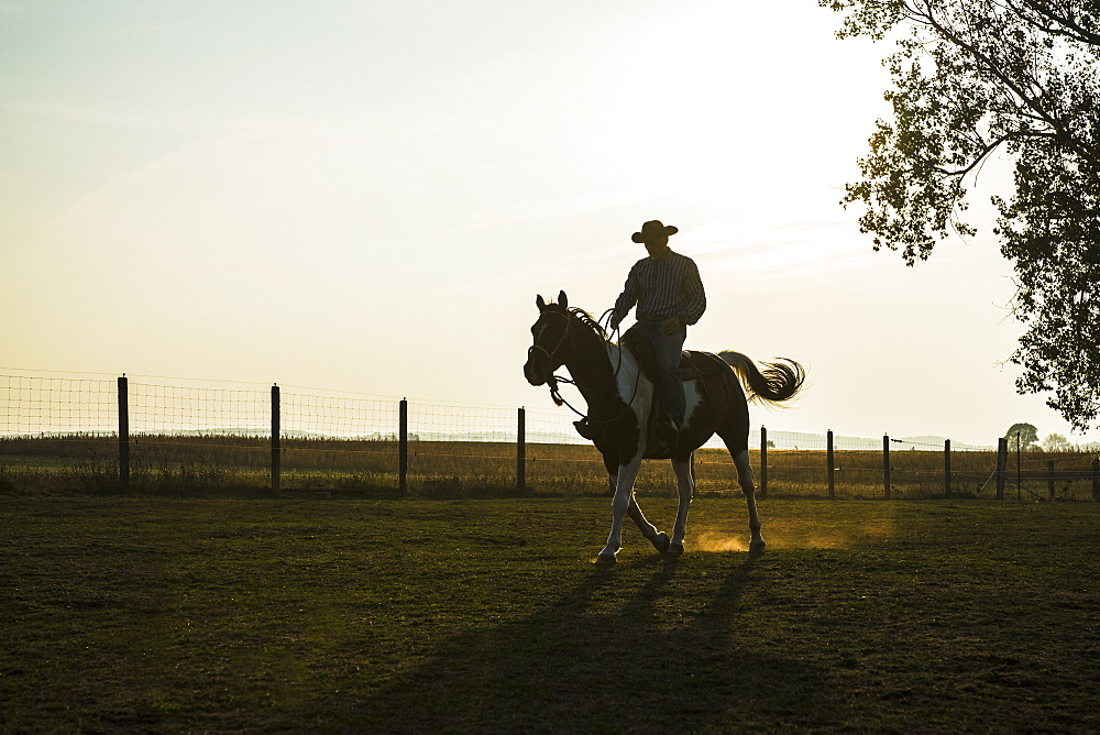 Silhouette cowboy riding horse on rural ranch