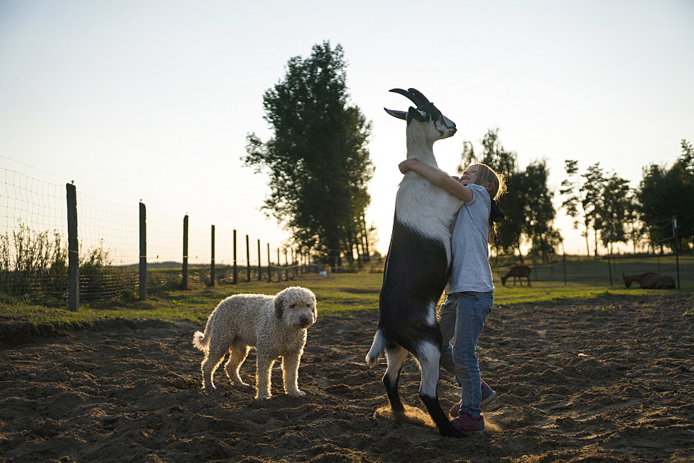 Girl dancing with goat in rural field