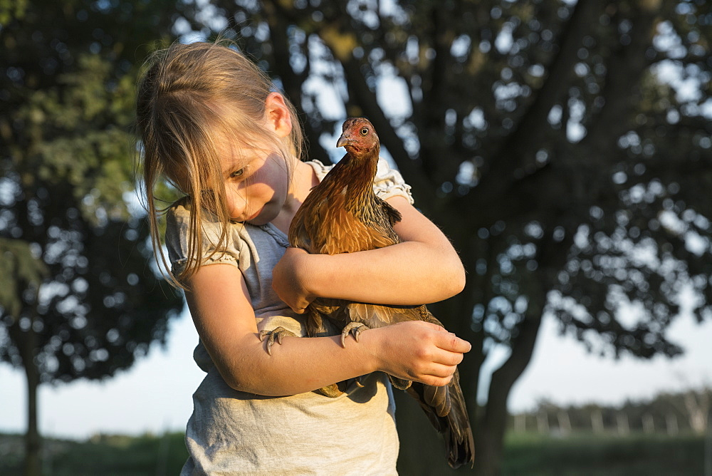 Girl holding Bush Hen on farm