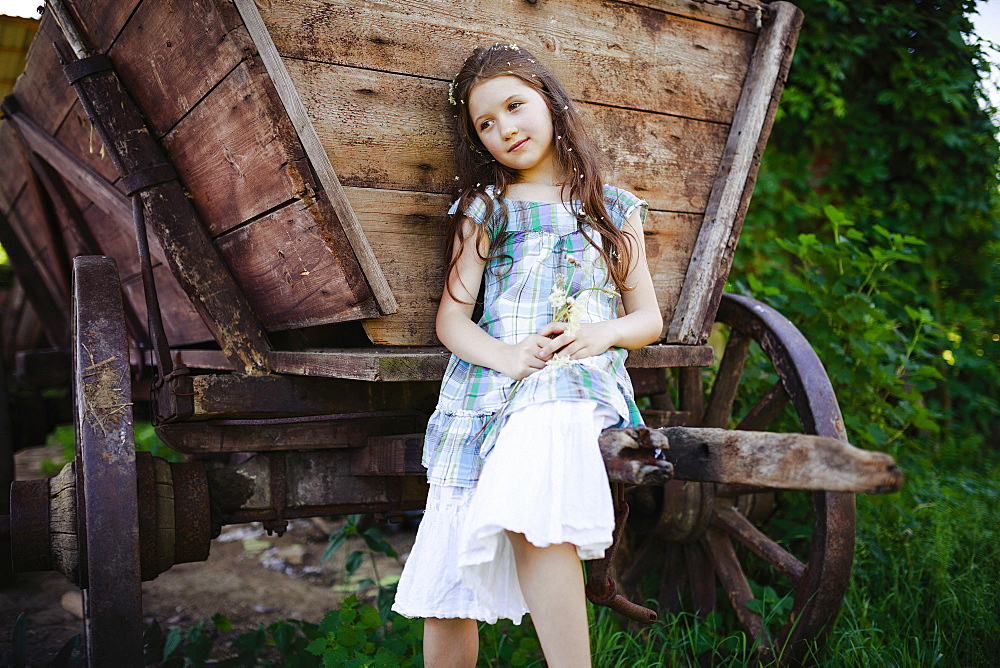 Serene girl in dress with flowers in hair at rural wagon