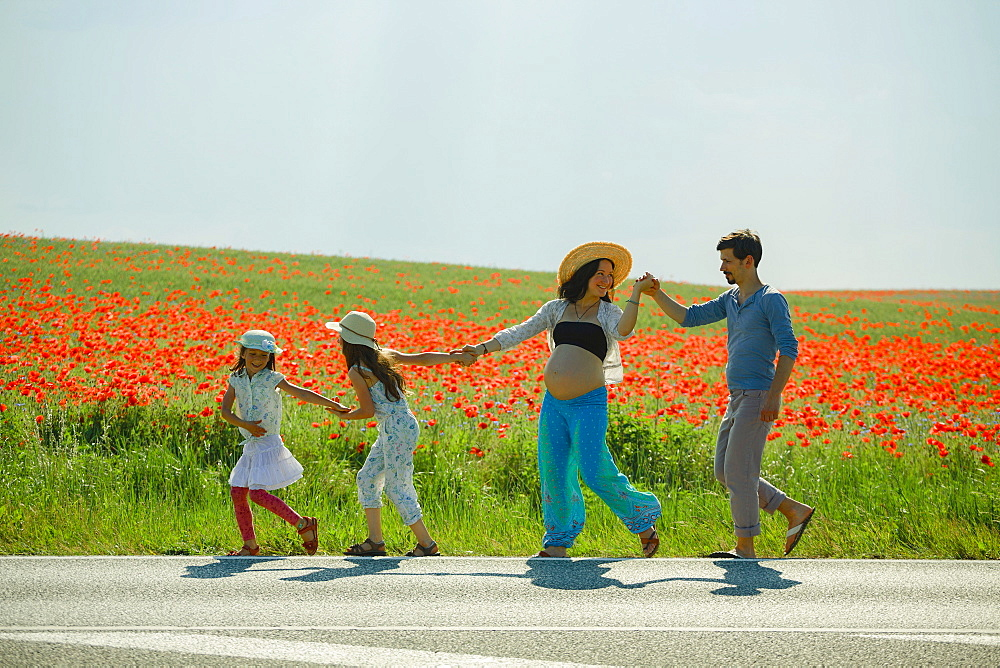 Happy pregnant family holding hands, walking along sunny rural red poppy field