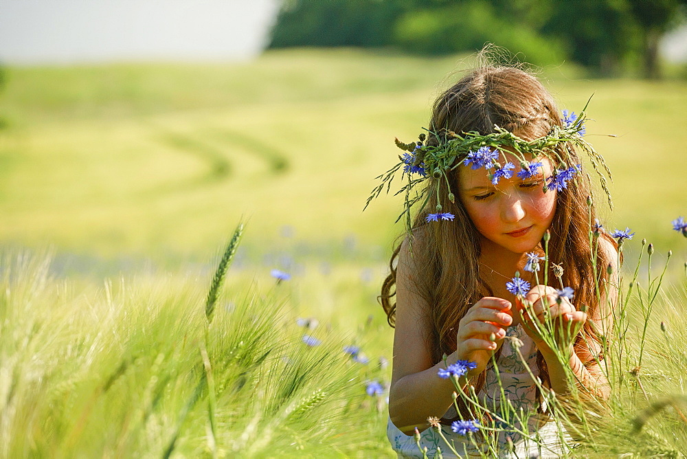 Curious girl with wildflowers in hair in sunny, rural wheat field