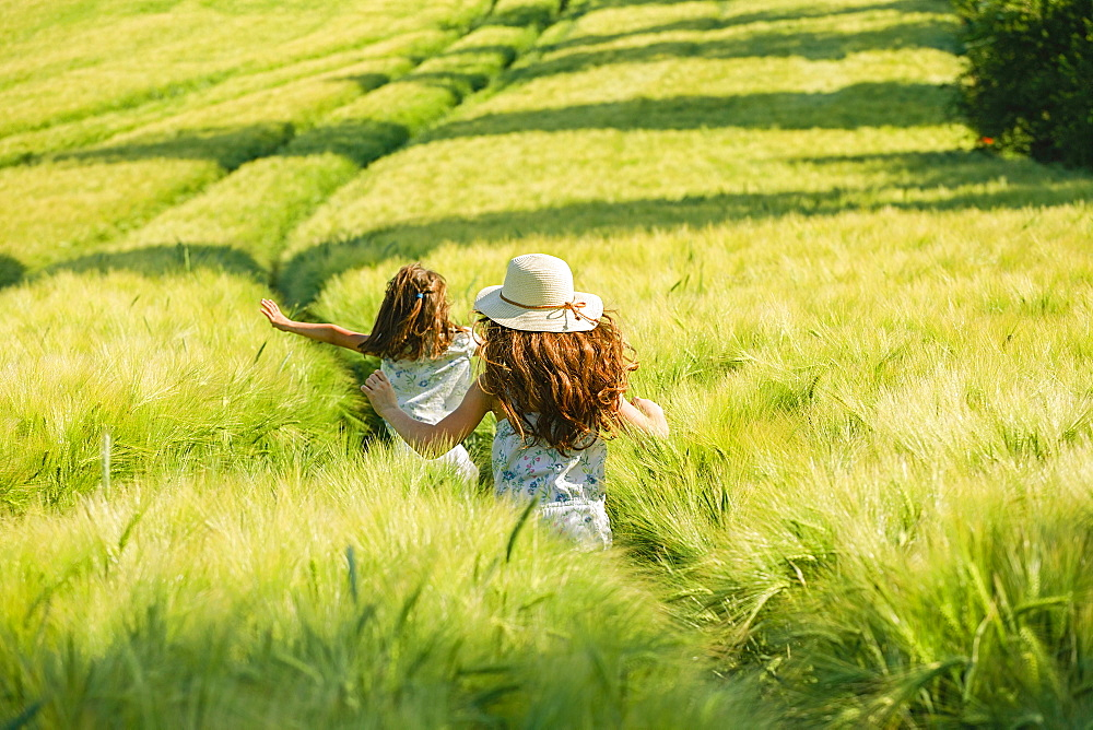 Playful, carefree girls running in sunny, idyllic rural green wheat field
