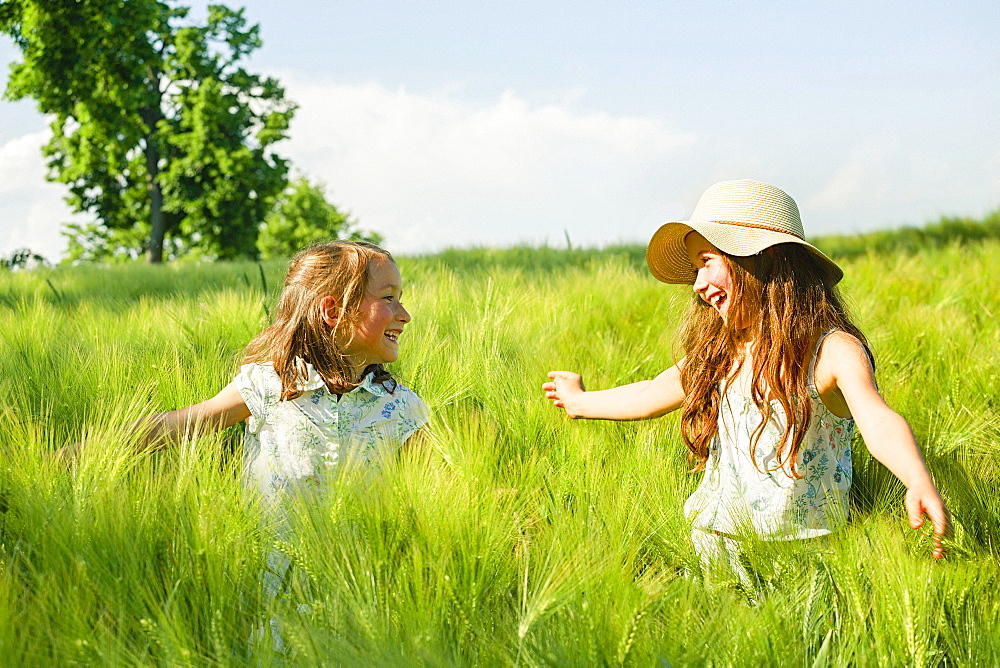 Happy, carefree sisters in sunny, idyllic rural green wheat field
