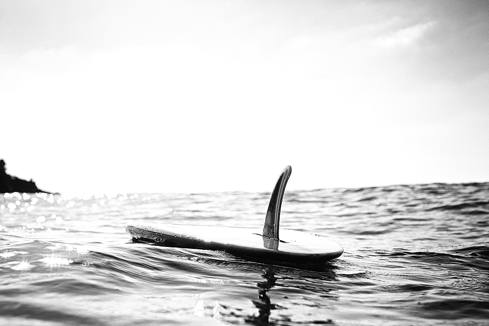 Surfboard with fin floating on sunny ocean water, San Pancho, Nayarit, Mexico