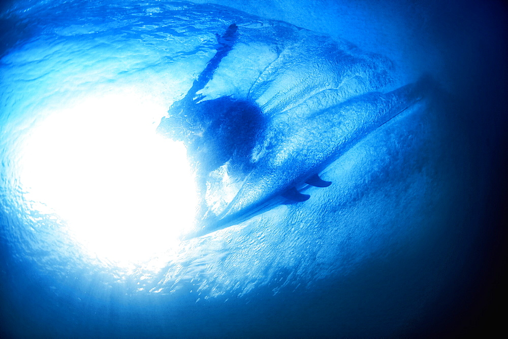 Underwater view sunshine over surfer