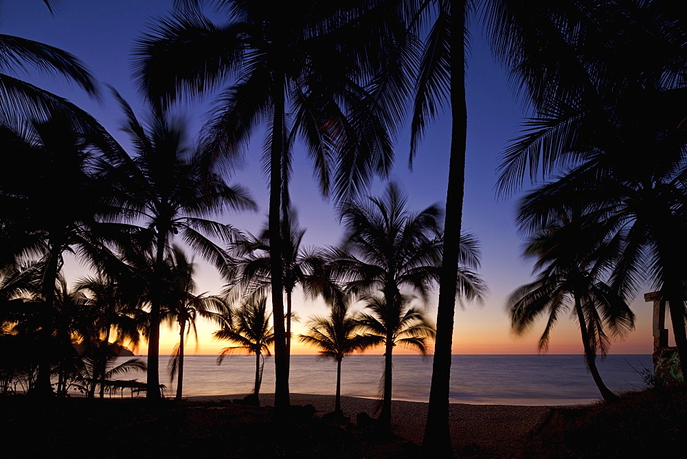 Tranquil, idyllic tropical ocean beach with palm trees at sunset, Sayulita, Nayarit, Mexico