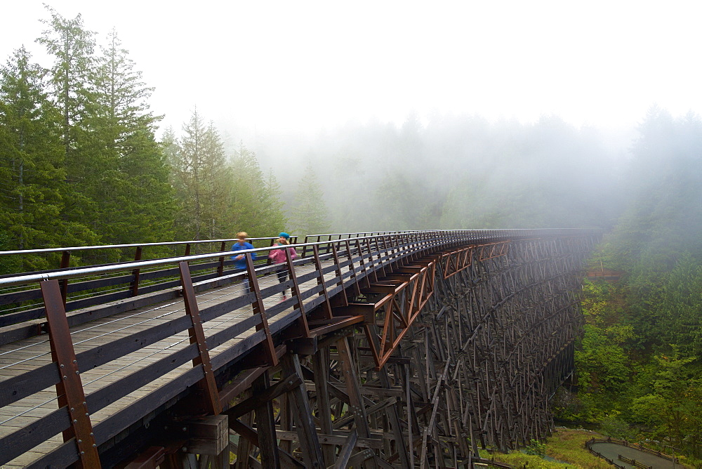 Kids running over railway trestle, British Columbia, Canada