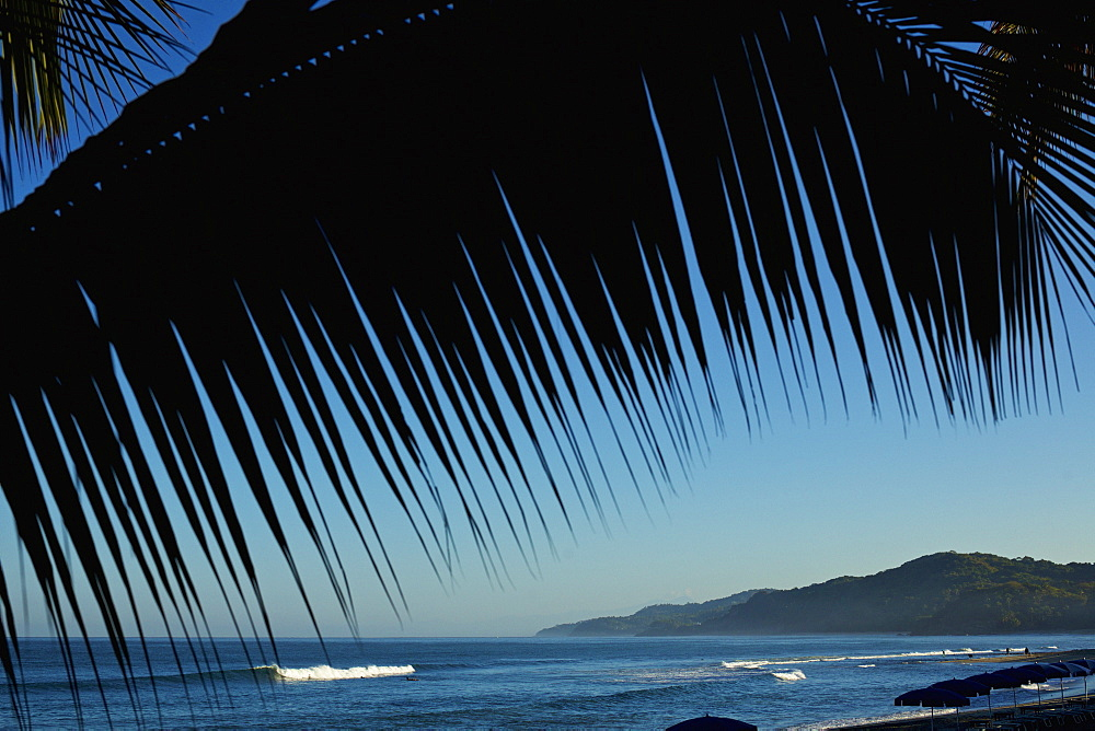 Palm tree framing idyllic, scenic blue ocean view, Sayulita, Nayarit, Mexico