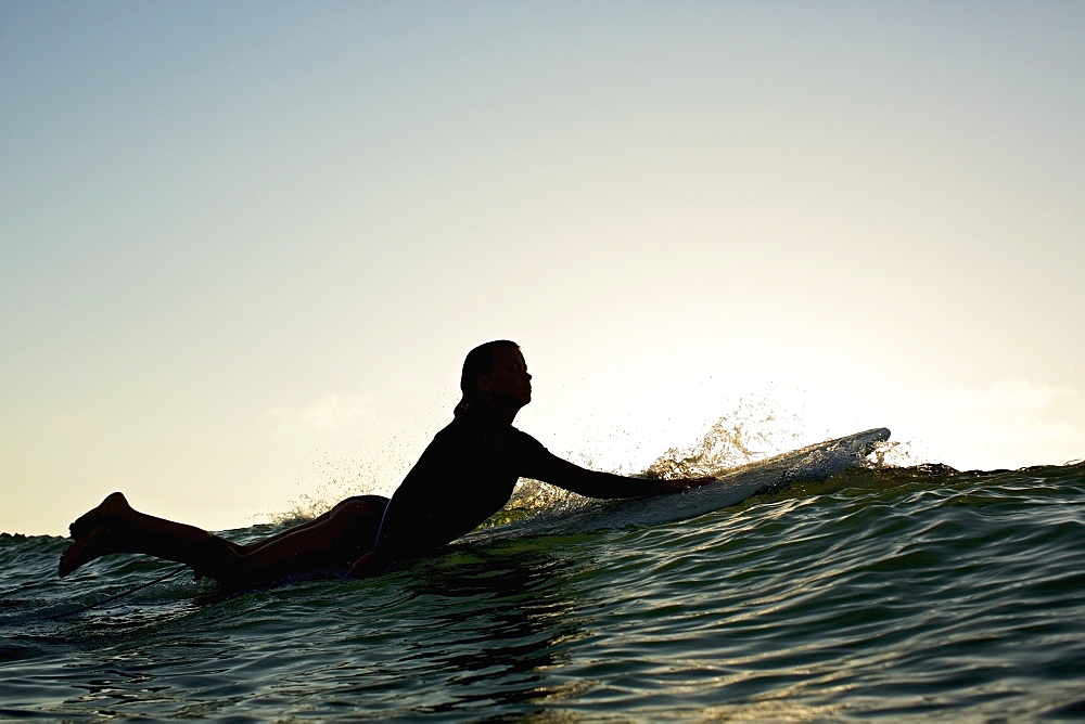 Silhouette female surfer paddling out - 1177-2706