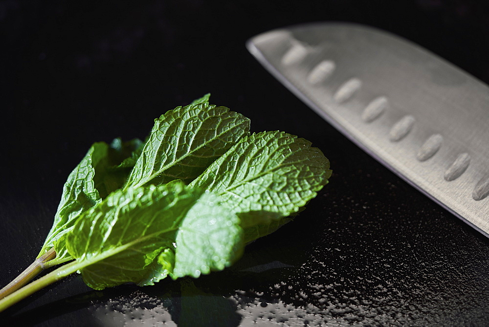 Close up mint leaf and knife