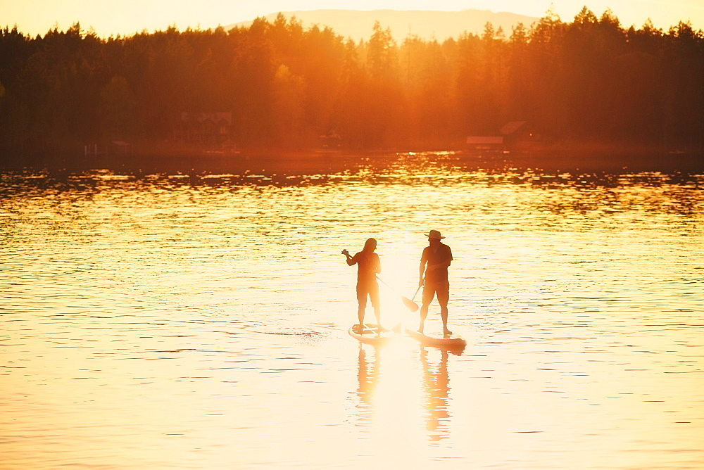 Silhouette couple standup paddleboarding on sunny sunset lake, Shawnigan Lake, Canada