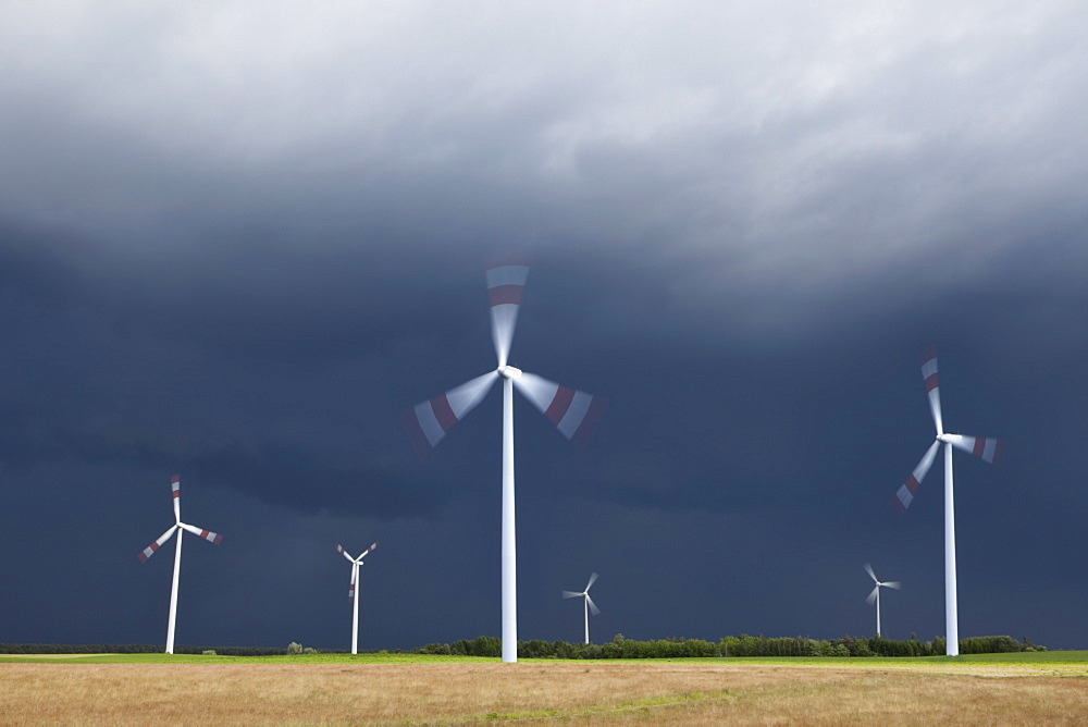 Wind turbines spinning in a field