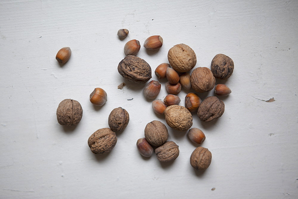 High angle view of nuts