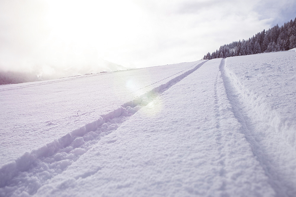 Tire track on snow covered landscape