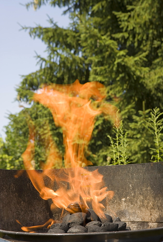 Flaming barbeque grill