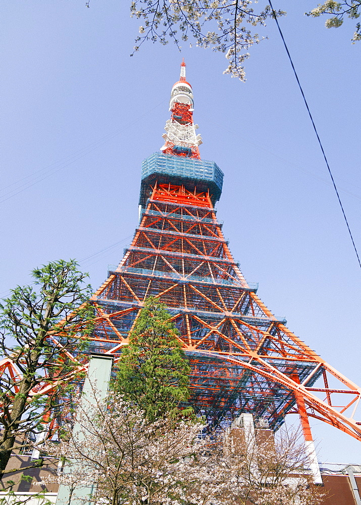 Tokyo Tower against sunny blue sky, Tokyo, Japan
