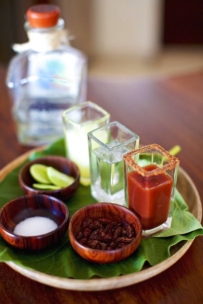 Gourmet tequila shots on tray - 1177-2687
