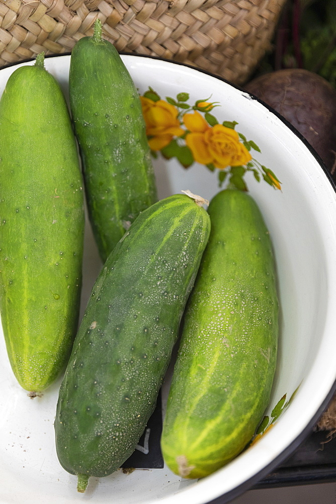 Close up organic green cucumbers in vintage bowl