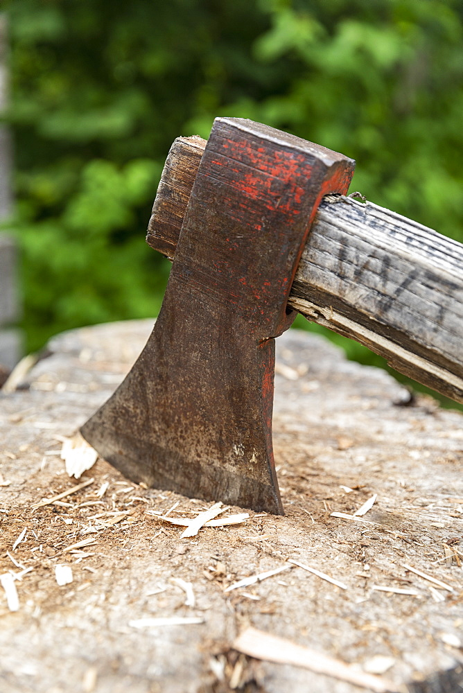 Close up wood chopping axe in tree stump