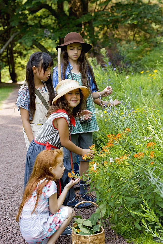 Four girls picking wildflowers