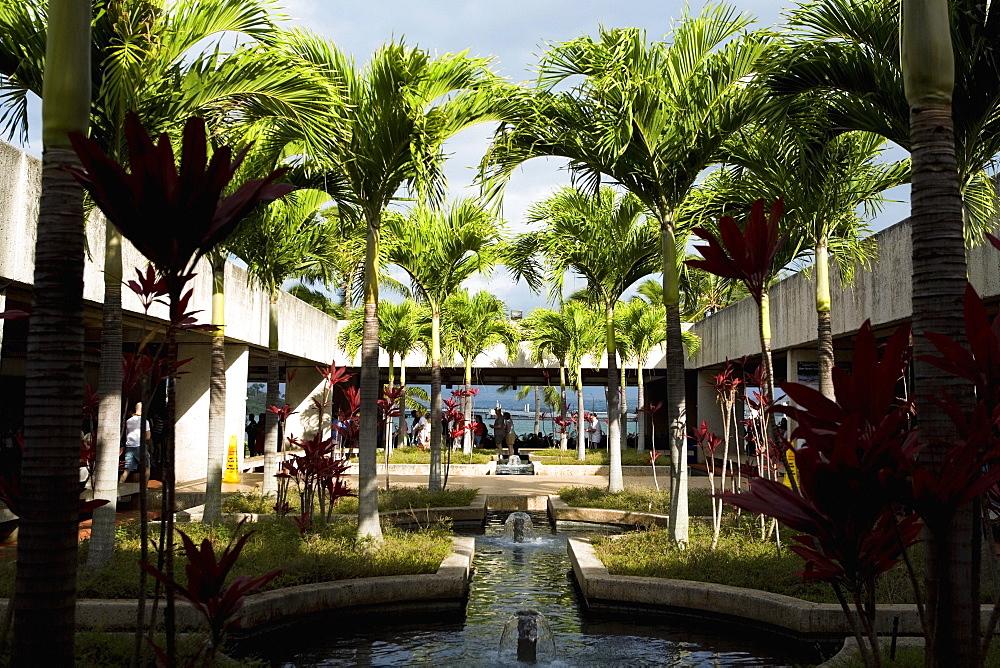 Palm trees on the courtyard of a building, Pearl Harbor, Honolulu, Oahu, Hawaii Islands, USA