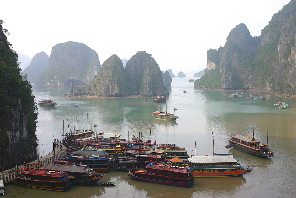 High angle view of tourboats docked at a harbor, Halong Bay, Vietnam