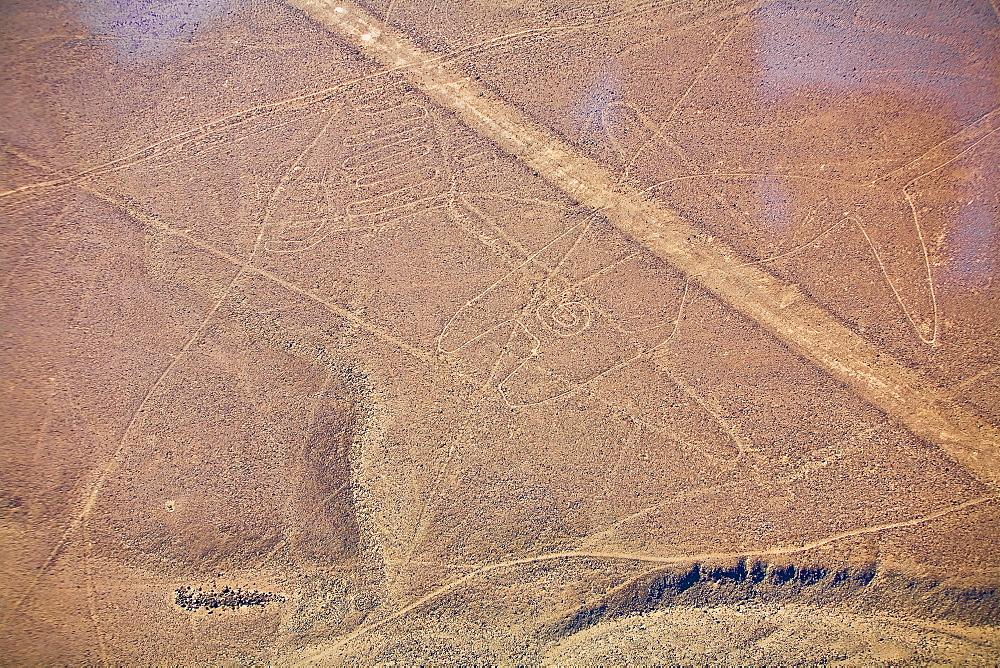 Aerial view of Nazca lines, Nazca, Peru