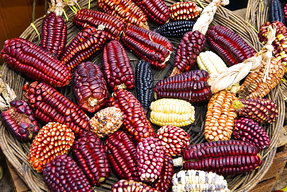 High angle view of a basket of colored corns in a market stall, Pisaq, Cuzco, Peru