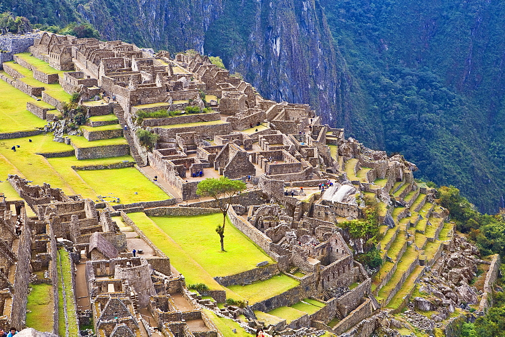 High angle view of ruins on mountains, Machu Picchu, Cusco Region, Peru - 788-14578