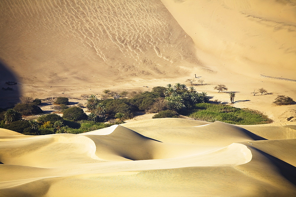 High angle view of an oasis in a desert, Huacachina, Ica, Ica Region, Peru