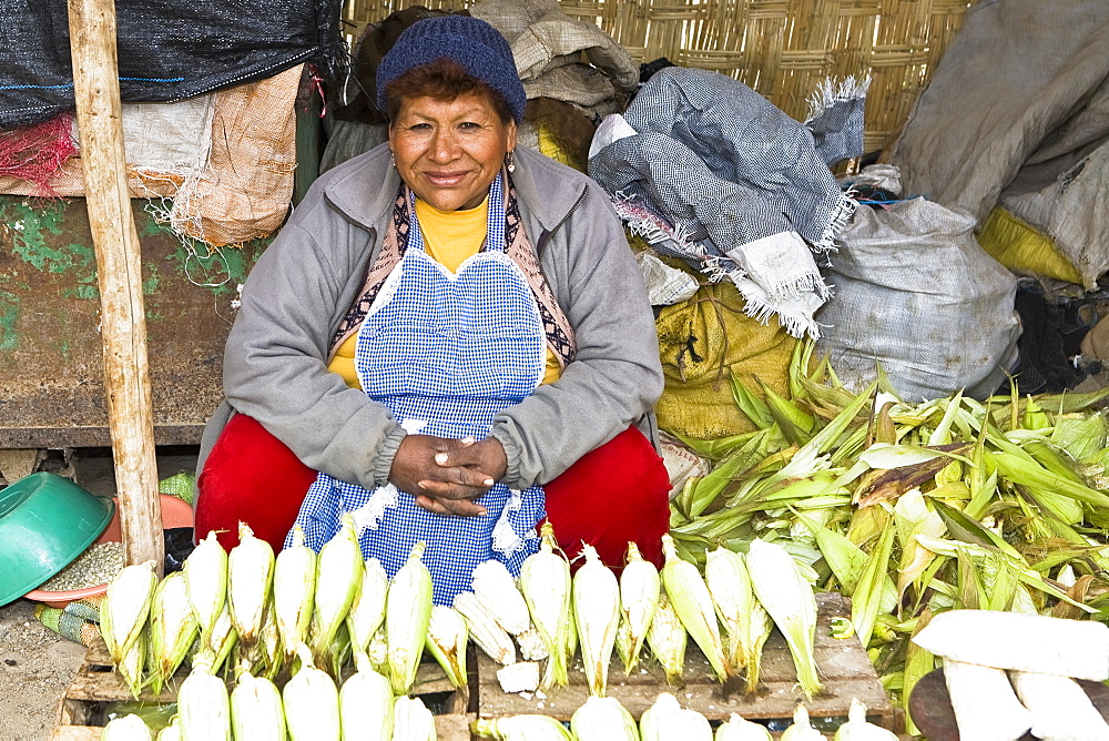 Portrait of a mature woman sitting at a market stall, Ica, Ica Region, Peru