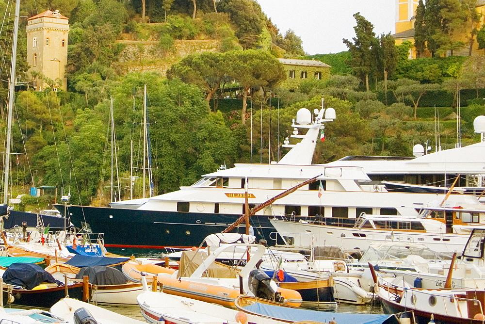 Boats moored at a harbor, Italian Riviera, Portofino, Genoa, Liguria, Italy