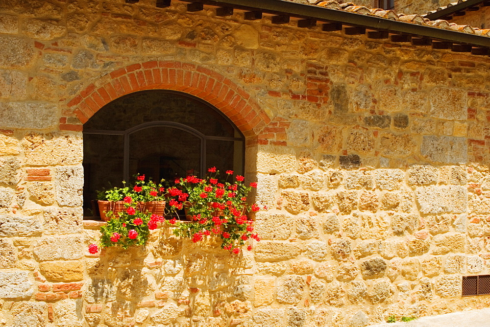 Potted plants on a window sill, Monteriggioni, Siena Province, Tuscany, Italy