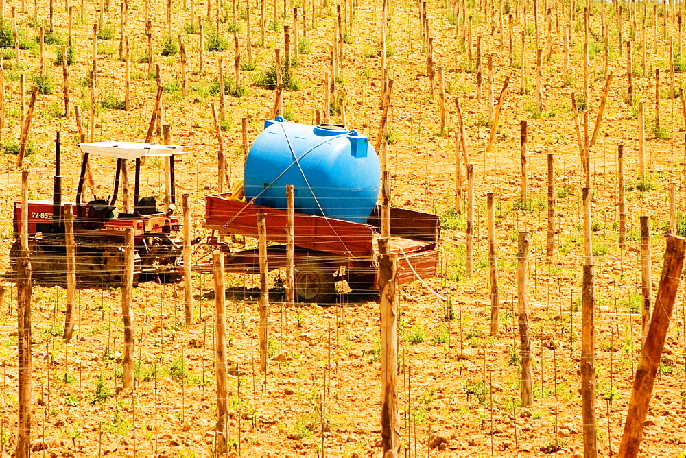 Tractor with tanker in a vineyard, Siena Province, Tuscany, Italy