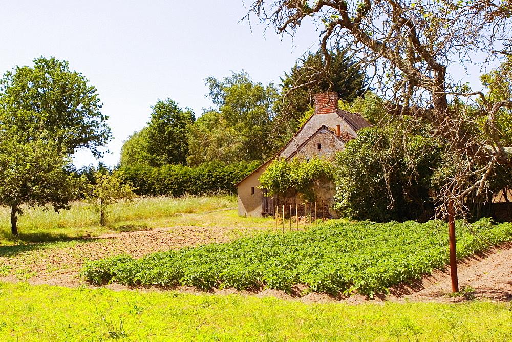 Barn in a field, Loire Valley, France