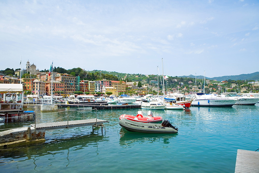 Boats at a harbor, Italian Riviera, Santa Margherita Ligure, Genoa, Liguria, Italy