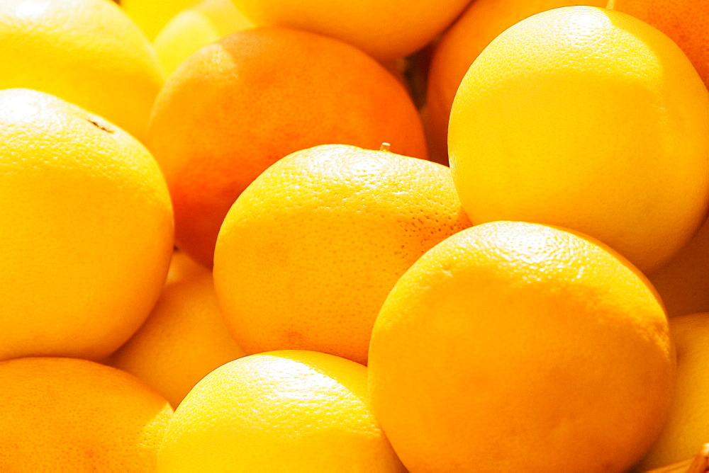 Close-up of oranges, Genoa, Liguria, Italy