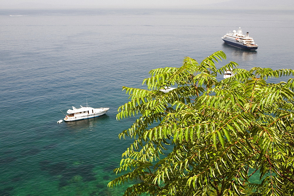 High angle view of tourboats and a cruise ship in the sea, Bay of Naples, Sorrento, Sorrentine Peninsula, Naples Province, Campania, Italy