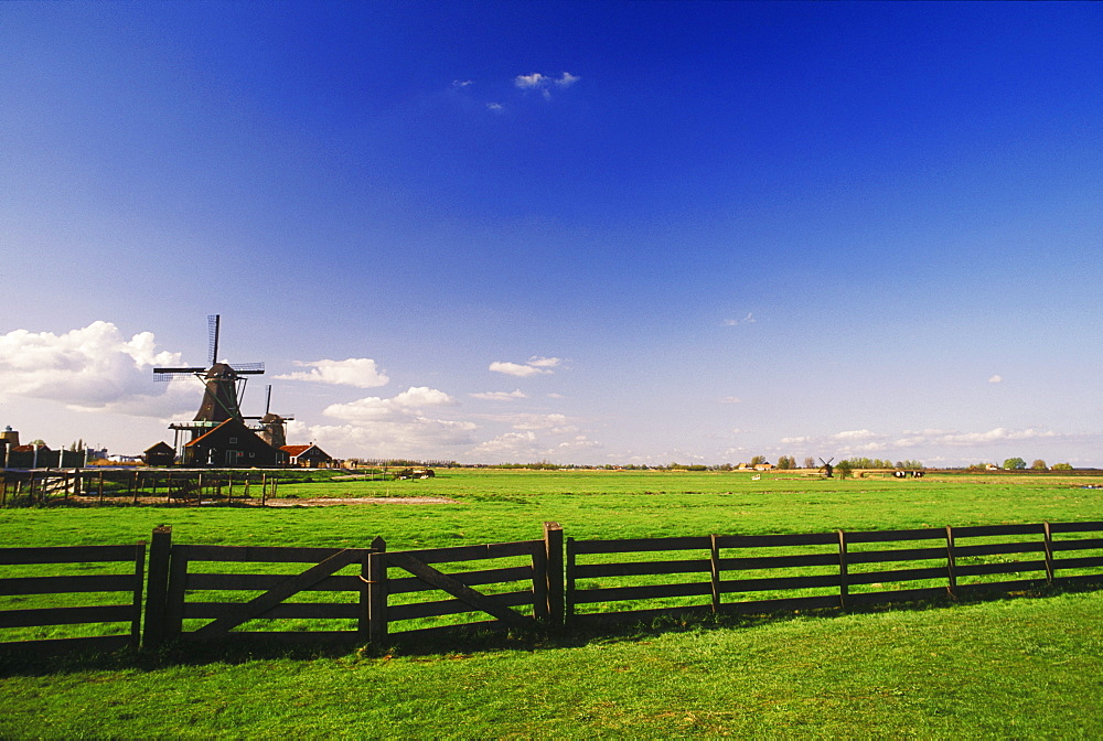 Traditional windmill in a field, Amsterdam, Netherlands