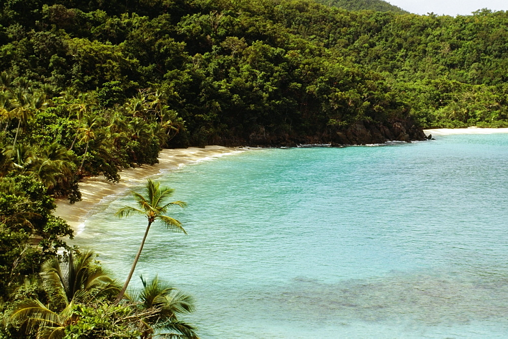High angle view of a coast, St. John, U.S. Virgin Islands
