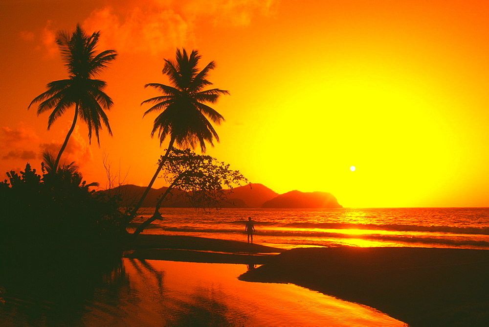 A spectacular sunset, Tobago, Caribbean - 788-3281