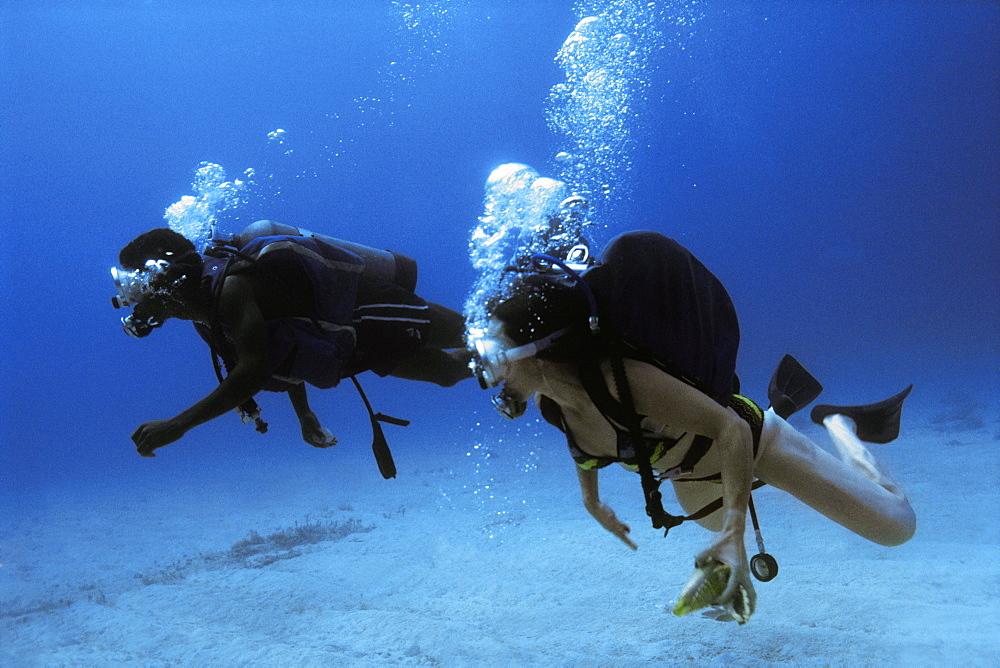 Scuba Divers are seen underwater in Jamaica