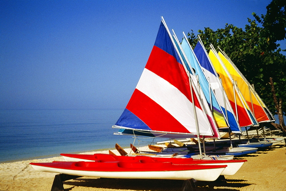 Brightly colored sails on windsurf boards at Hedonism Resort, Jamaica